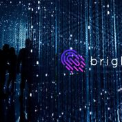 Brightcom Team